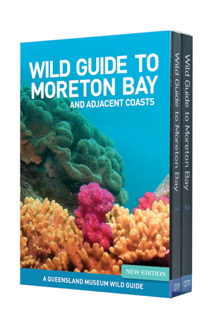 Wild Guide to Moreton Bay and Adjacent Coasts