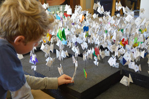 Noah and his collection of origami fish